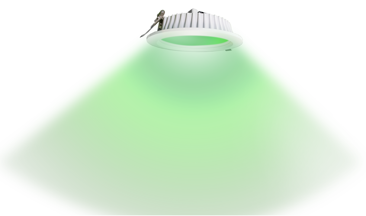 RGB Downlight Green