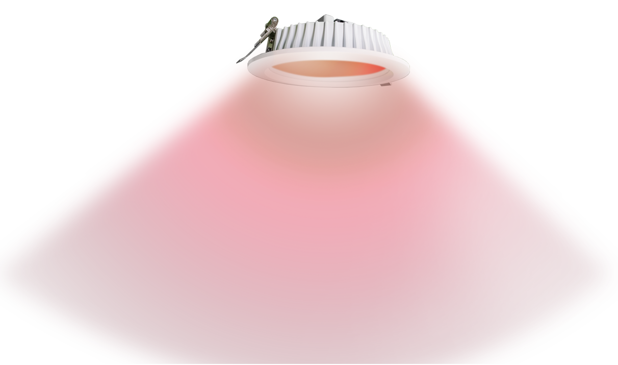 RGB Downlight Red